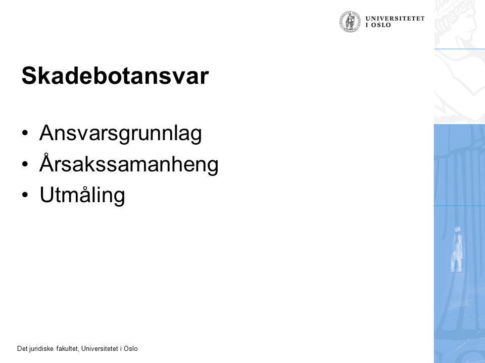 Det juridiske fakultet, Universitetet i Oslo Skadebotansvar Ansvarsgrunnlag Årsakssamanheng Utmåling