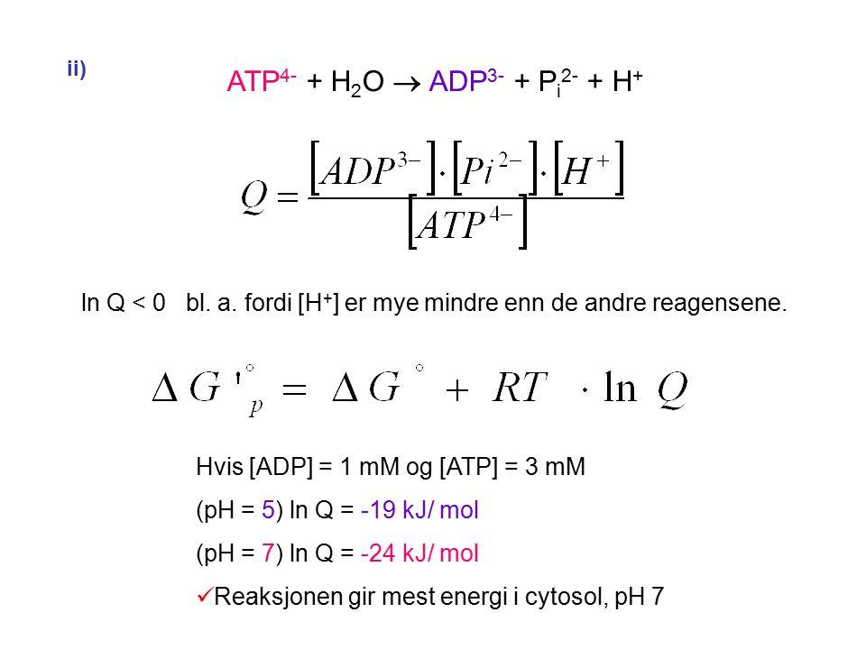 ii) ATP 4- + H 2 O  ADP 3- + P i 2- + H + ln Q < 0 bl.
