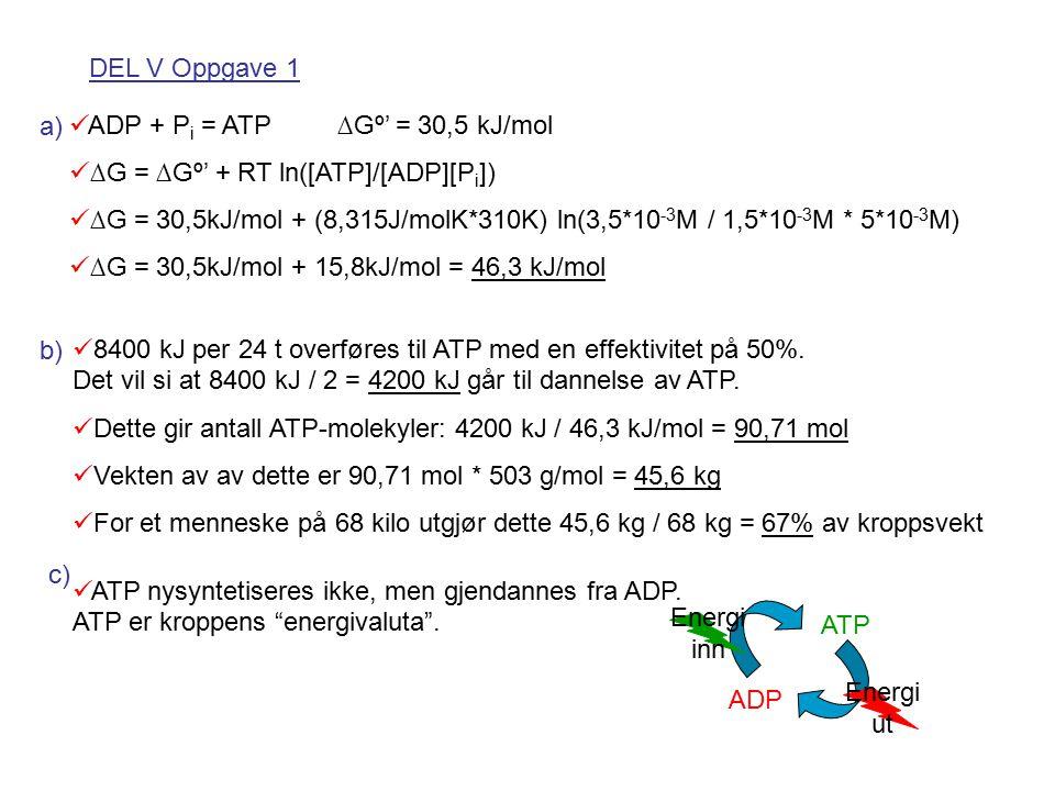 DEL V Oppgave 1 a) ADP + P i = ATP ∆Gº' = 30,5 kJ/mol ∆G = ∆Gº' + RT ln([ATP]/[ADP][P i ]) ∆G = 30,5kJ/mol + (8,315J/molK*310K) ln(3,5*10 -3 M / 1,5*10 -3 M * 5*10 -3 M) ∆G = 30,5kJ/mol + 15,8kJ/mol = 46,3 kJ/mol b) 8400 kJ per 24 t overføres til ATP med en effektivitet på 50%.