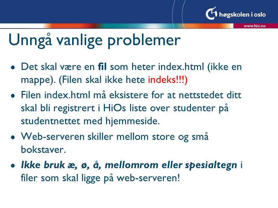 Unngå vanlige problemer l Det skal være en fil som heter index.html (ikke en mappe).