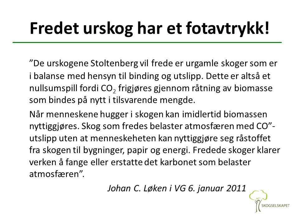 """Fredet urskog har et fotavtrykk! """"De urskogene Stoltenberg vil frede er urgamle skoger som er i balanse med hensyn til binding og utslipp. Dette er al"""