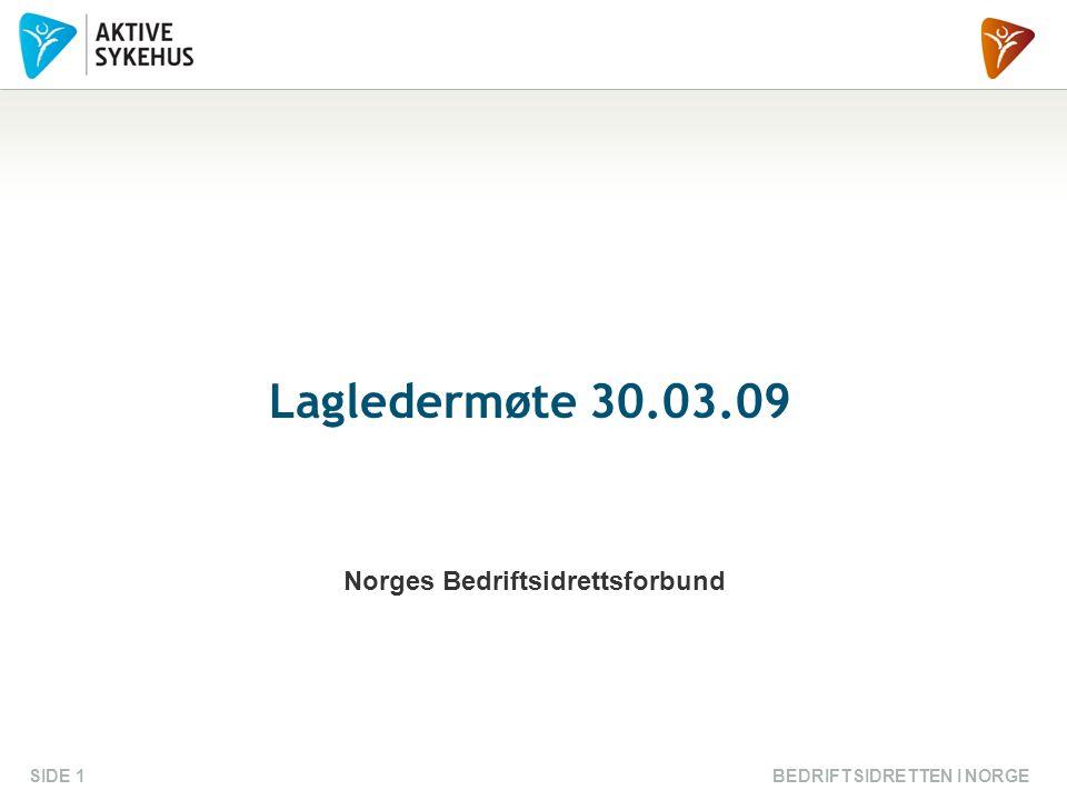 BEDRIFTSIDRETTEN I NORGESIDE 1 Lagledermøte 30.03.09 Norges Bedriftsidrettsforbund