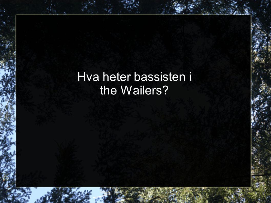 Hva heter bassisten i the Wailers?