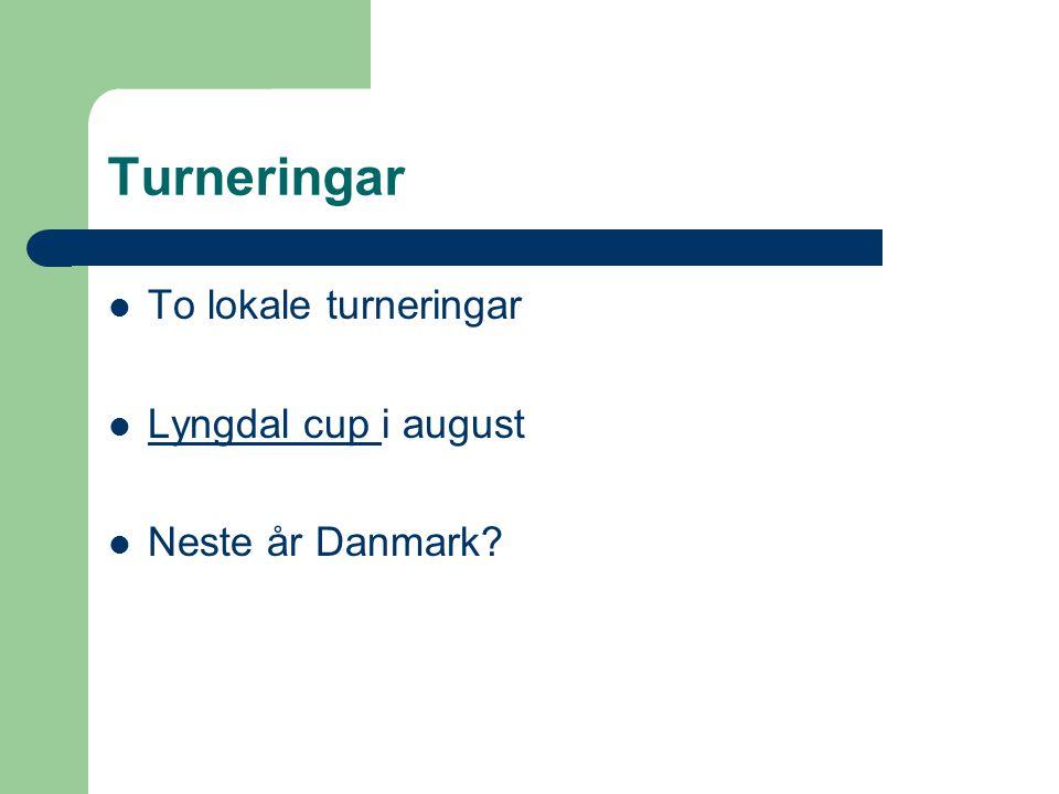 Turneringar To lokale turneringar Lyngdal cup i august Lyngdal cup Neste år Danmark?