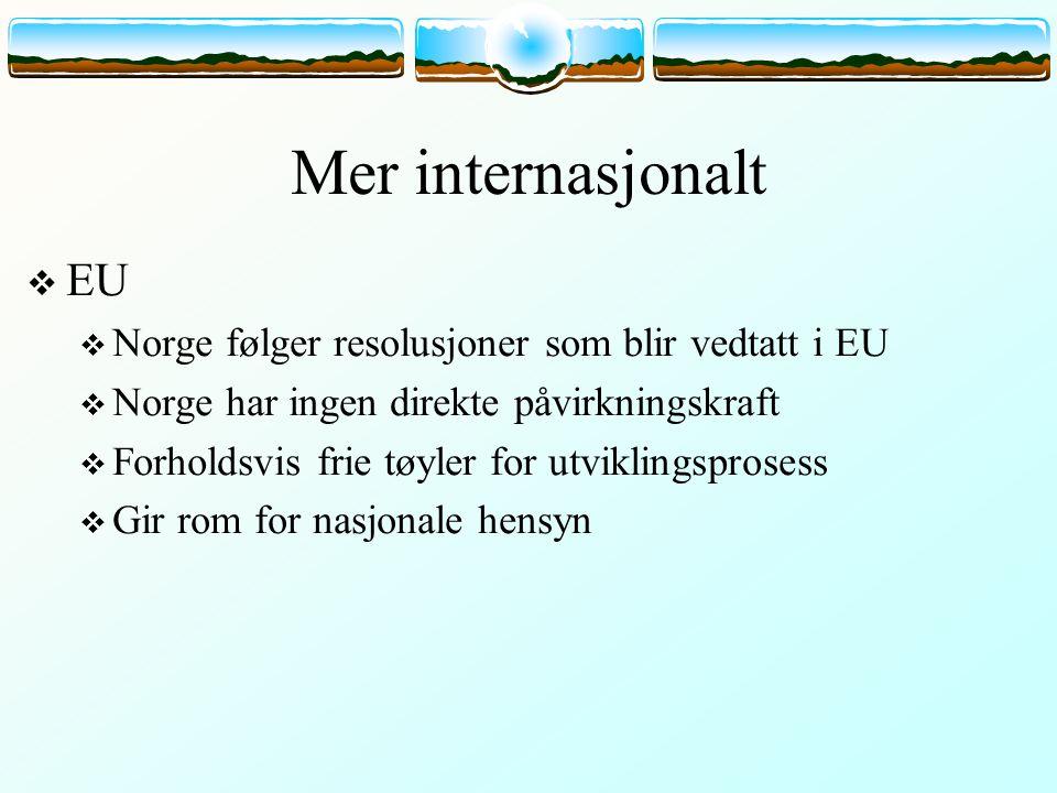 Mer internasjonalt  EU  Norge følger resolusjoner som blir vedtatt i EU  Norge har ingen direkte påvirkningskraft  Forholdsvis frie tøyler for utviklingsprosess  Gir rom for nasjonale hensyn