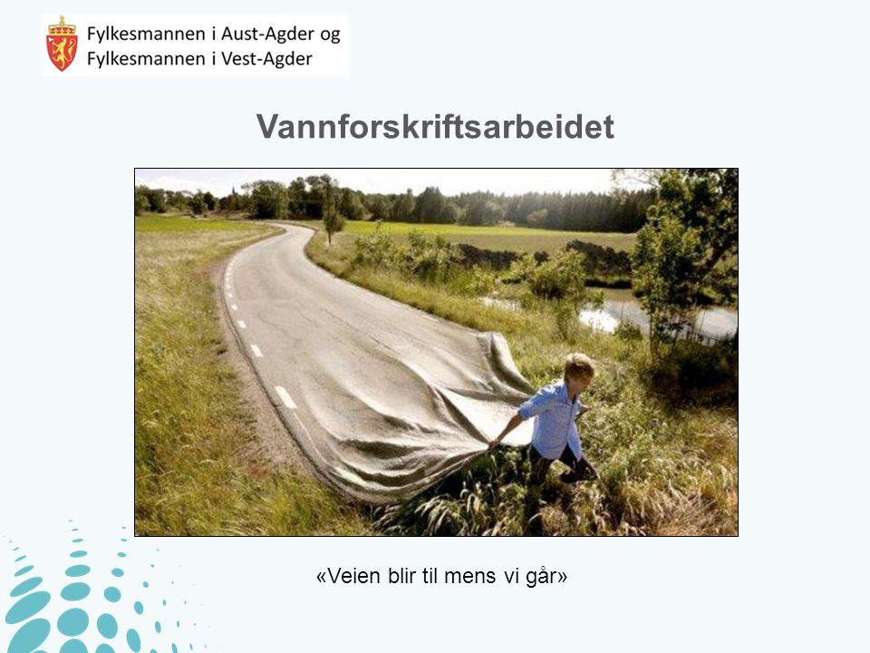 Vannforskriftsarbeidet «Veien blir til mens vi går»