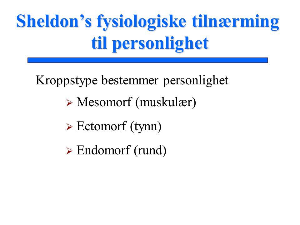 Kroppstype bestemmer personlighet  Mesomorf (muskulær)  Ectomorf (tynn)  Endomorf (rund) Sheldon's fysiologiske tilnærming til personlighet