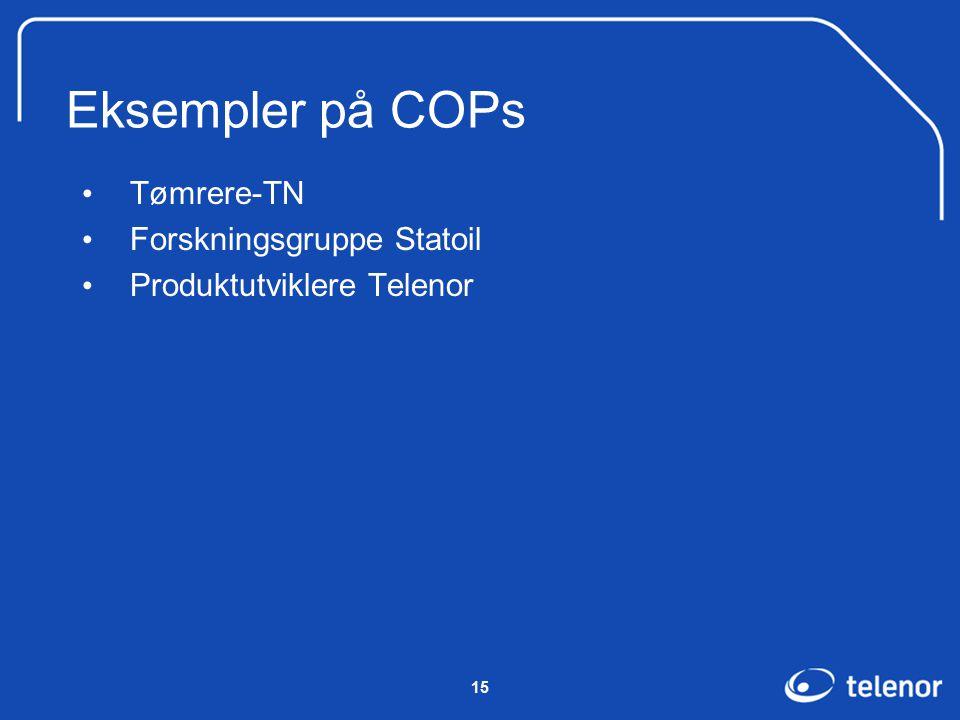 15 Eksempler på COPs Tømrere-TN Forskningsgruppe Statoil Produktutviklere Telenor