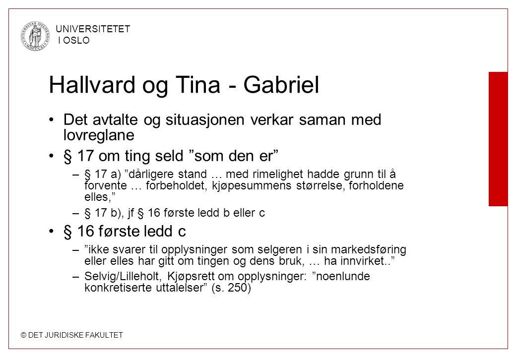 """© DET JURIDISKE FAKULTET UNIVERSITETET I OSLO Hallvard og Tina - Gabriel Det avtalte og situasjonen verkar saman med lovreglane § 17 om ting seld """"som"""