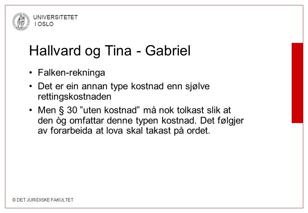 © DET JURIDISKE FAKULTET UNIVERSITETET I OSLO Hallvard og Tina - Gabriel Falken-rekninga Det er ein annan type kostnad enn sjølve rettingskostnaden Me