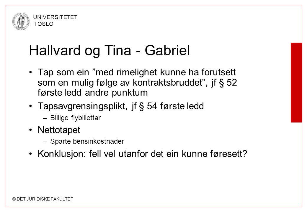 """© DET JURIDISKE FAKULTET UNIVERSITETET I OSLO Hallvard og Tina - Gabriel Tap som ein """"med rimelighet kunne ha forutsett som en mulig følge av kontrakt"""
