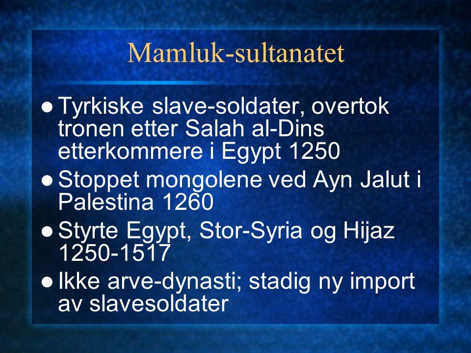 Mamluk-sultanatet Tyrkiske slave-soldater, overtok tronen etter Salah al-Dins etterkommere i Egypt 1250 Stoppet mongolene ved Ayn Jalut i Palestina 12