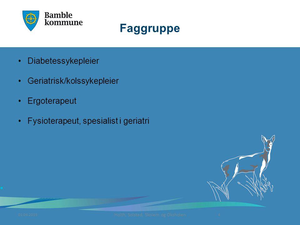 Holth, Solstad, Skolem og Oksholen Faggruppe Diabetessykepleier Geriatrisk/kolssykepleier Ergoterapeut Fysioterapeut, spesialist i geriatri 01.04.20154