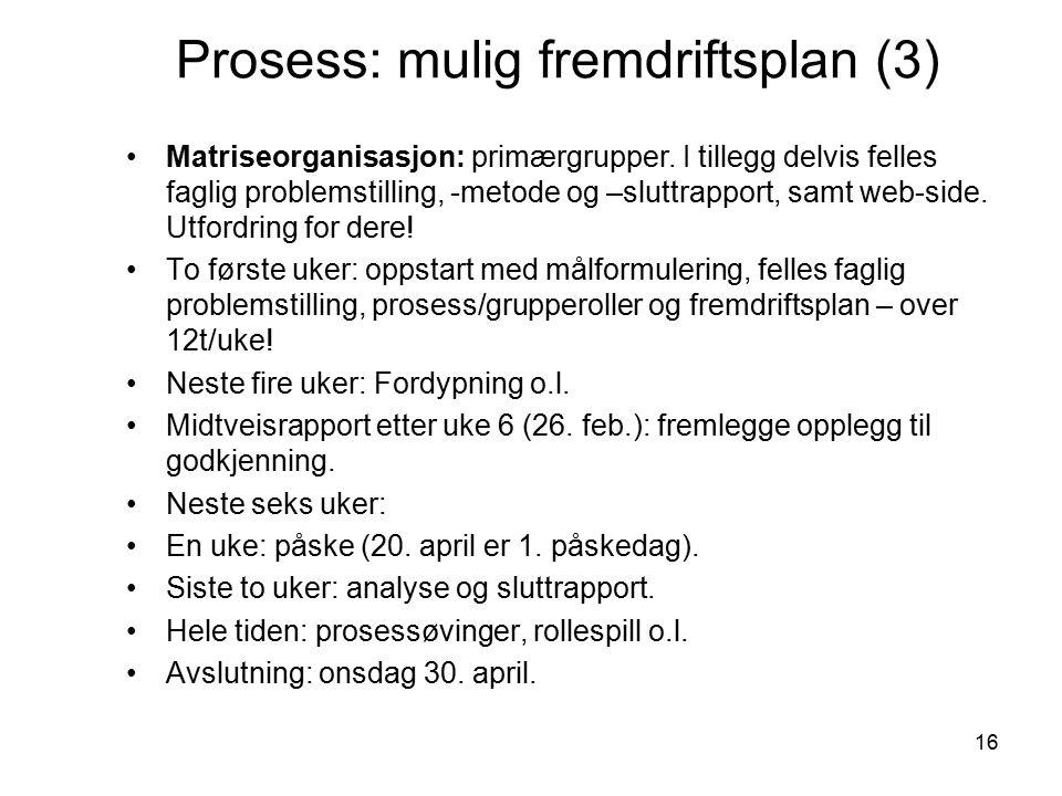 16 Prosess: mulig fremdriftsplan (3) Matriseorganisasjon: primærgrupper.