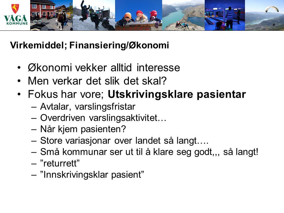 Virkemiddel; Finansiering/Økonomi Økonomi vekker alltid interesse Men verkar det slik det skal.