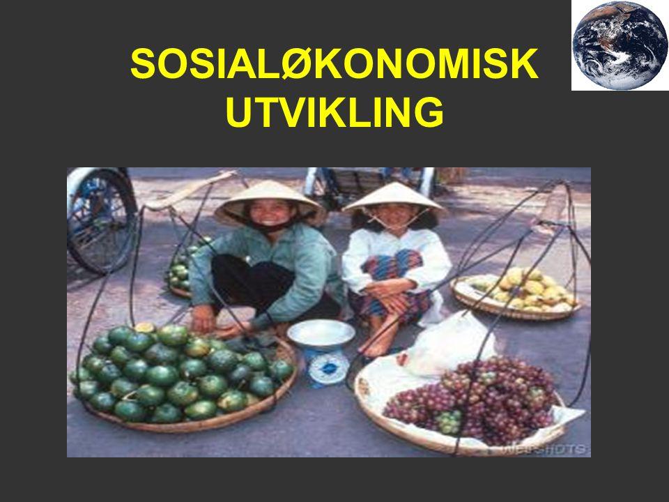 SOSIALØKONOMISK UTVIKLING