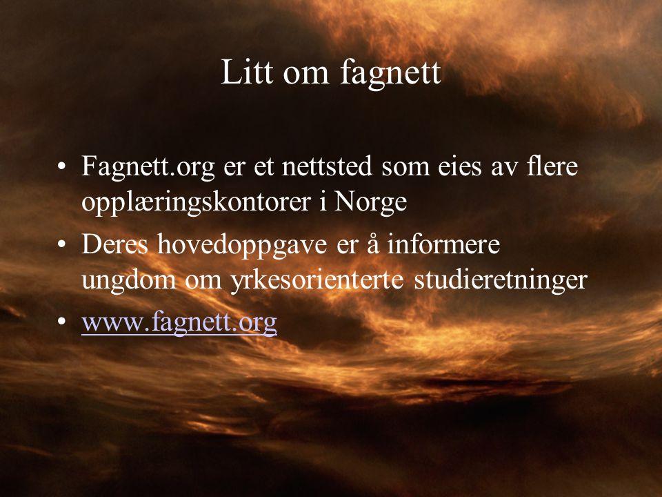 Litt om fagnett Fagnett.org er et nettsted som eies av flere opplæringskontorer i Norge Deres hovedoppgave er å informere ungdom om yrkesorienterte st