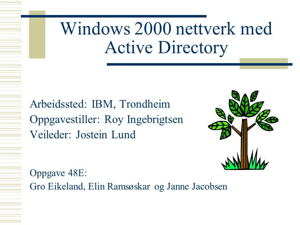 Windows 2000 nettverk med Active Directory Arbeidssted: IBM, Trondheim Oppgavestiller: Roy Ingebrigtsen Veileder: Jostein Lund Oppgave 48E: Gro Eikeland, Elin Ramsøskar og Janne Jacobsen