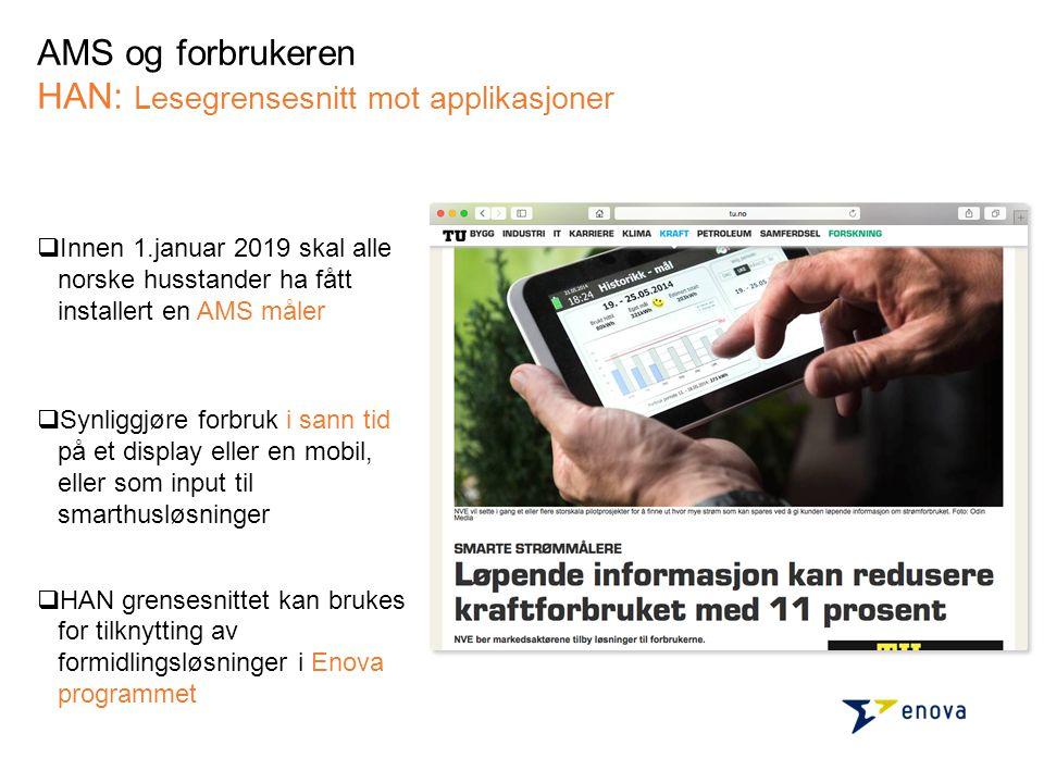 AMS og forbrukeren HAN: Lesegrensesnitt mot applikasjoner  Innen 1.januar 2019 skal alle norske husstander ha fått installert en AMS måler  Synliggj