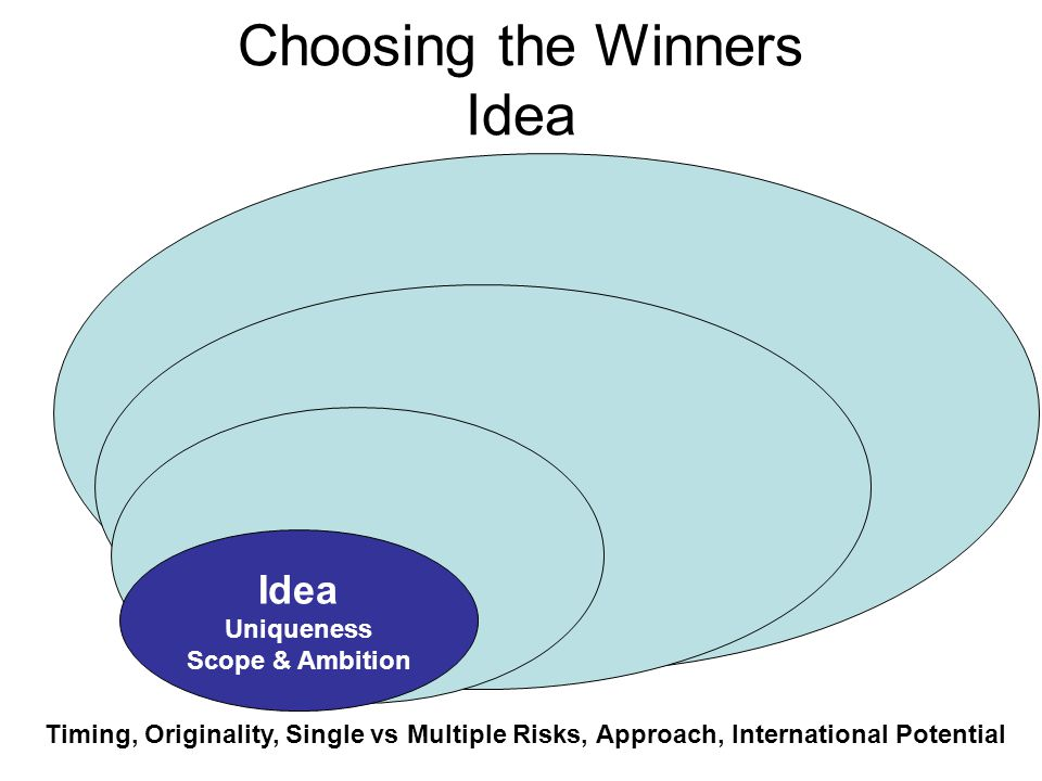 Choosing the Winners Idea Idea Uniqueness Scope & Ambition Timing, Originality, Single vs Multiple Risks, Approach, International Potential