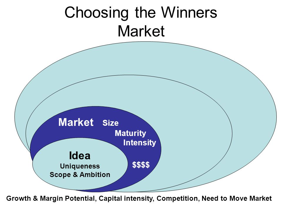 Choosing the Winners Market Market Size Maturity Intensity $$$$ Idea Uniqueness Scope & Ambition Growth & Margin Potential, Capital intensity, Competi