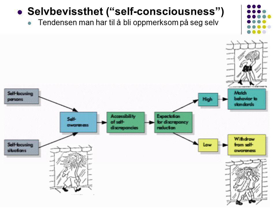 """16 Selvbevissthet (""""self-consciousness"""") Tendensen man har til å bli oppmerksom på seg selv"""