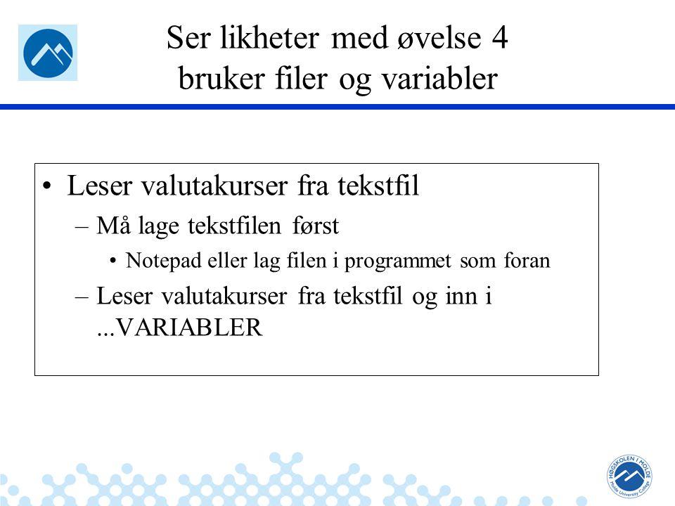 Jæger: Robuste og sikre systemer Ser likheter med øvelse 4 bruker filer og variabler Leser valutakurser fra tekstfil –Må lage tekstfilen først Notepad