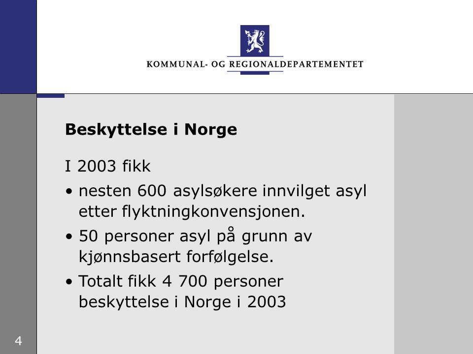 4 I 2003 fikk nesten 600 asylsøkere innvilget asyl etter flyktningkonvensjonen.