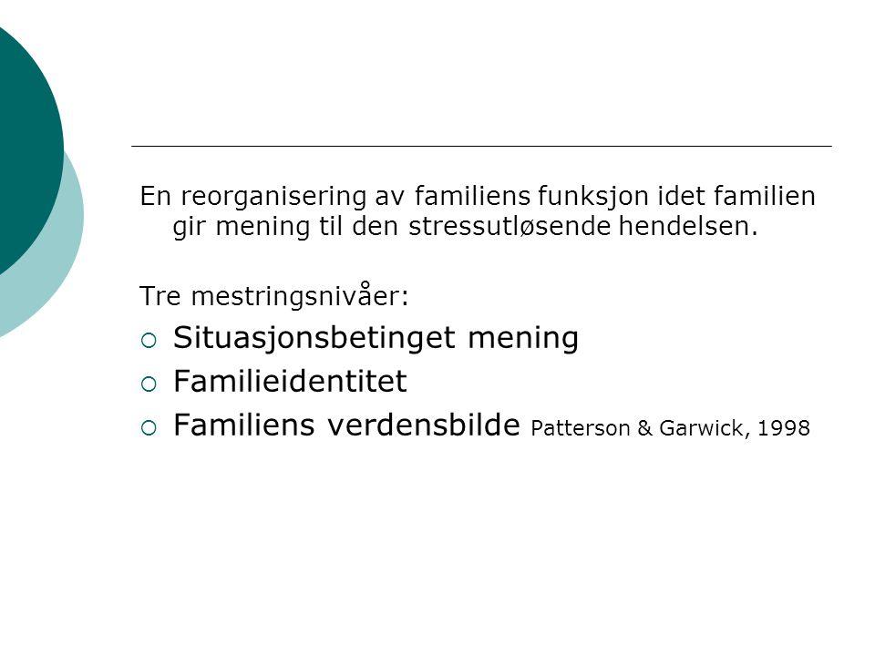 En reorganisering av familiens funksjon idet familien gir mening til den stressutløsende hendelsen. Tre mestringsnivåer:  Situasjonsbetinget mening 