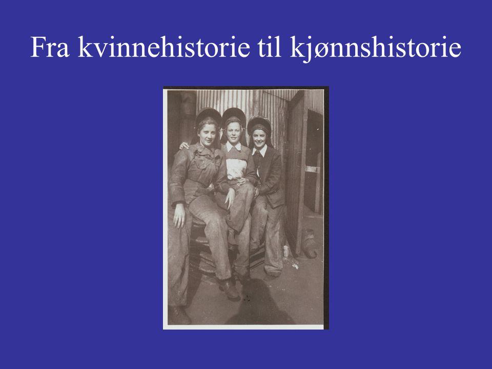 Historiefremstilling Kjeldstadlis inndeling av litterære former: 1.Krøniken 2.Analysen 3.Syntesen 4.Fortellingen el.