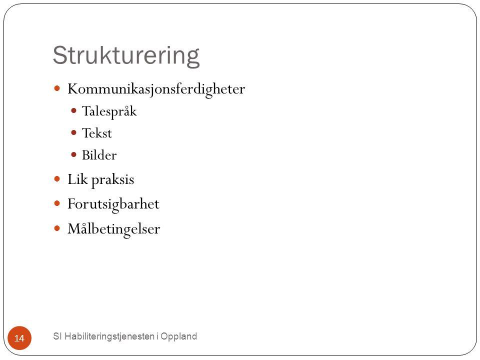 Strukturering SI Habiliteringstjenesten i Oppland 14 Kommunikasjonsferdigheter Talespråk Tekst Bilder Lik praksis Forutsigbarhet Målbetingelser