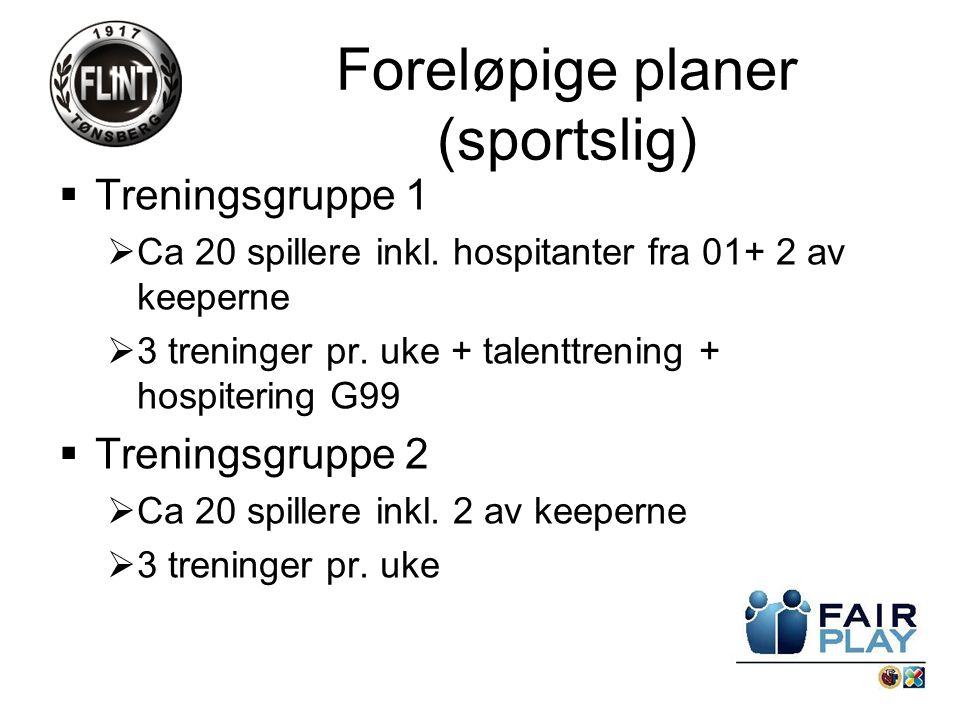  Treningsgruppe 1  Ca 20 spillere inkl. hospitanter fra 01+ 2 av keeperne  3 treninger pr.