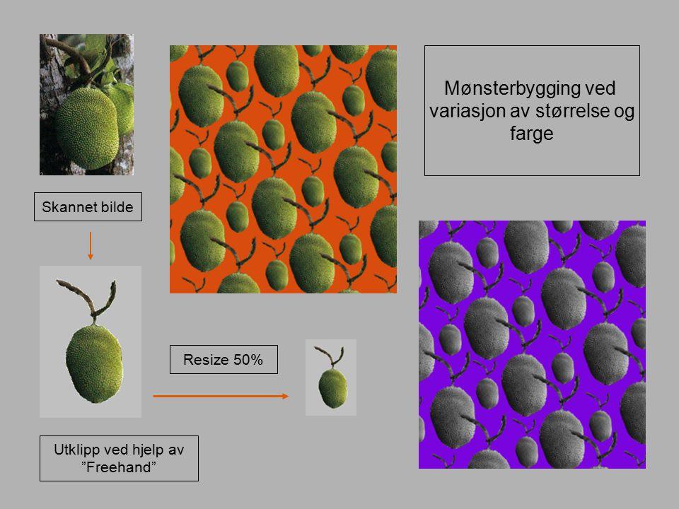"""Skannet bilde Utklipp ved hjelp av """"Freehand"""" Resize 50% Mønsterbygging ved variasjon av størrelse og farge"""