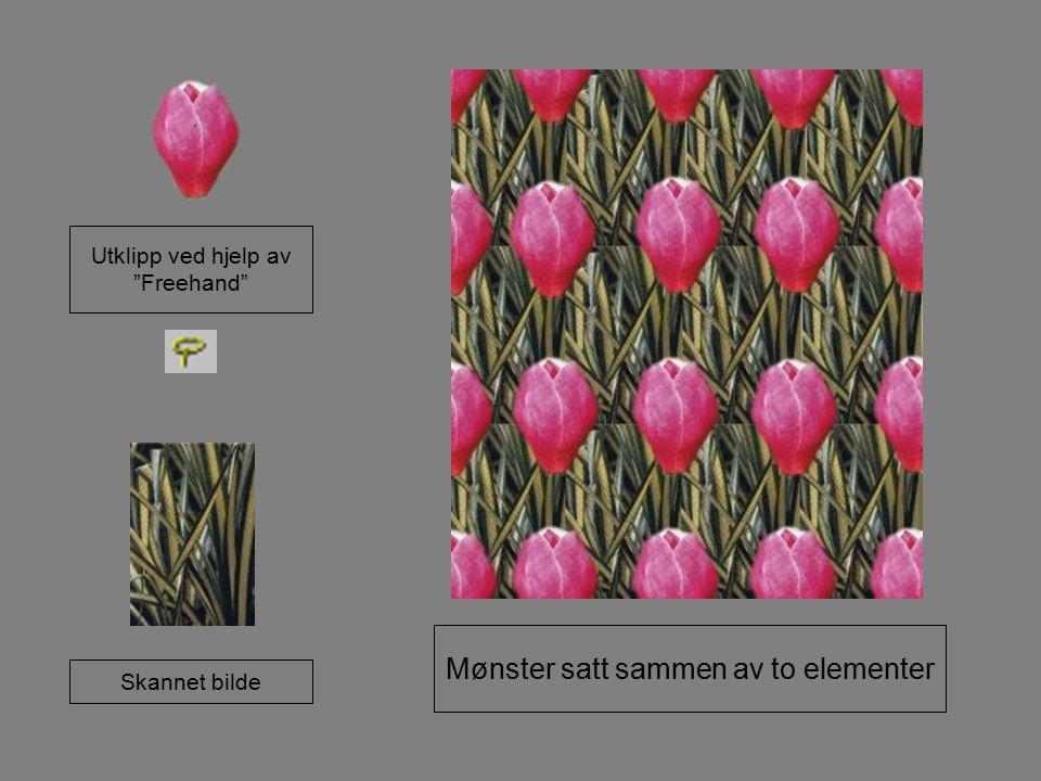 """Utklipp ved hjelp av """"Freehand"""" Skannet bilde Mønster satt sammen av to elementer"""
