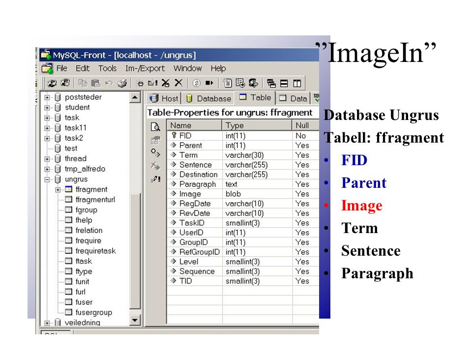 Upload Struktur menysiden viser: 4 sider: 1. image_new og 2.