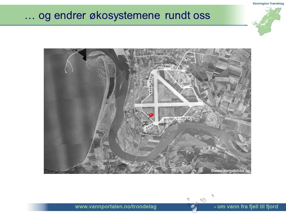 … og endrer økosystemene rundt oss ©www.norgeibilder.no