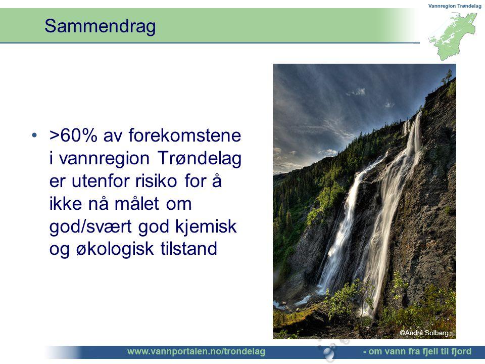 >60% av forekomstene i vannregion Trøndelag er utenfor risiko for å ikke nå målet om god/svært god kjemisk og økologisk tilstand Sammendrag ©André Solberg