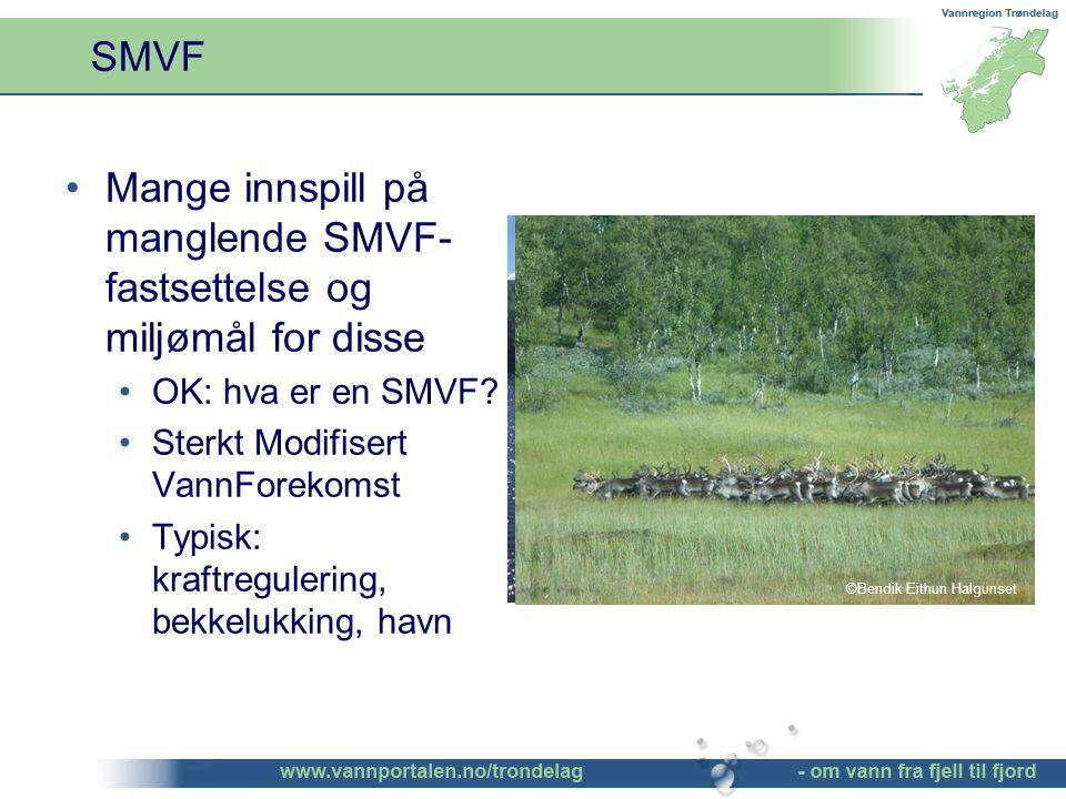 SMVF Mange innspill på manglende SMVF- fastsettelse og miljømål for disse OK: hva er en SMVF.