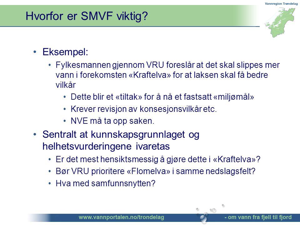 Hvorfor er SMVF viktig.