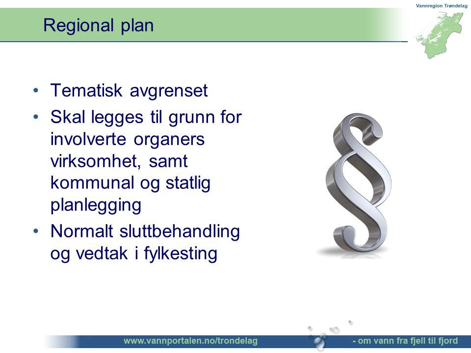 Tematisk avgrenset Skal legges til grunn for involverte organers virksomhet, samt kommunal og statlig planlegging Normalt sluttbehandling og vedtak i fylkesting Regional plan