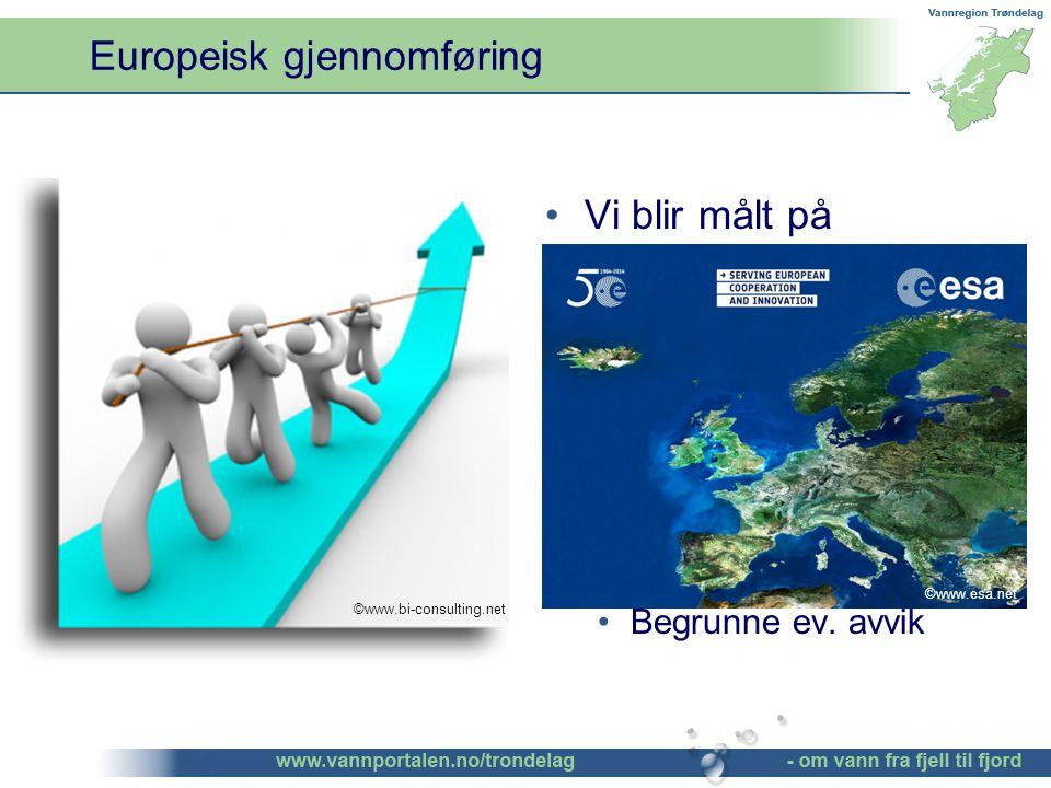 Europeisk gjennomføring Norge følger den felleseuropeiske gjennomføringen av vanndirektivet Fortløpende oppfølging og sanksjonering av ESA Vi blir målt på gjennomføring av planen Vi må derfor strekke oss etter å nå målsetningene og iverksette foreslåtte tiltak Begrunne ev.