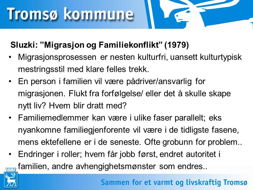 """Sluzki: """"Migrasjon og Familiekonflikt"""" (1979) Migrasjonsprosessen er nesten kulturfri, uansett kulturtypisk mestringsstil med klare felles trekk. En p"""