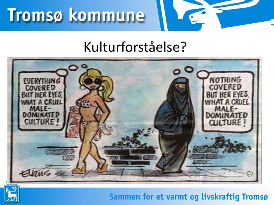 Kulturforståelse?