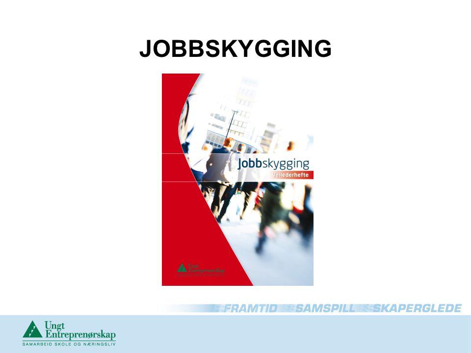 JOBBSKYGGING