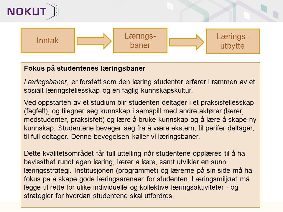 Inntak Lærings- baner Lærings- utbytte Fokus på studentenes læringsbaner Læringsbaner, er forstått som den læring studenter erfarer i rammen av et sos