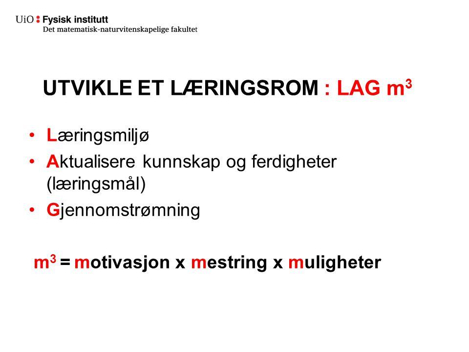 UTVIKLE ET LÆRINGSROM : LAG m 3 Læringsmiljø Aktualisere kunnskap og ferdigheter (læringsmål) Gjennomstrømning m 3 = motivasjon x mestring x muligheter
