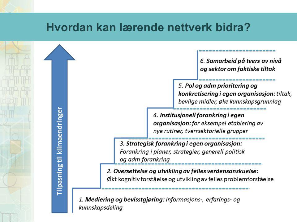 Hvordan kan lærende nettverk bidra?