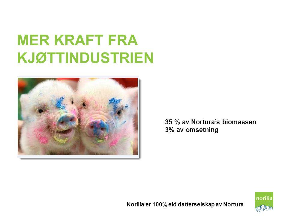 MER KRAFT FRA KJØTTINDUSTRIEN 35 % av Nortura's biomassen 3% av omsetning Norilia er 100% eid datterselskap av Nortura