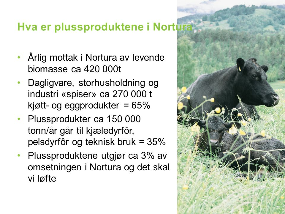 Hva er plussproduktene i Nortura Årlig mottak i Nortura av levende biomasse ca 420 000t Dagligvare, storhusholdning og industri «spiser» ca 270 000 t kjøtt- og eggprodukter = 65% Plussprodukter ca 150 000 tonn/år går til kjæledyrfôr, pelsdyrfôr og teknisk bruk = 35% Plussproduktene utgjør ca 3% av omsetningen i Nortura og det skal vi løfte