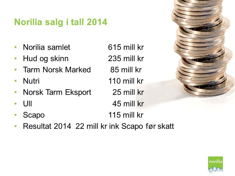 Norilia salg i tall 2014 Norilia samlet615 mill kr Hud og skinn235 mill kr Tarm Norsk Marked 85 mill kr Nutri110 mill kr Norsk Tarm Eksport 25 mill kr